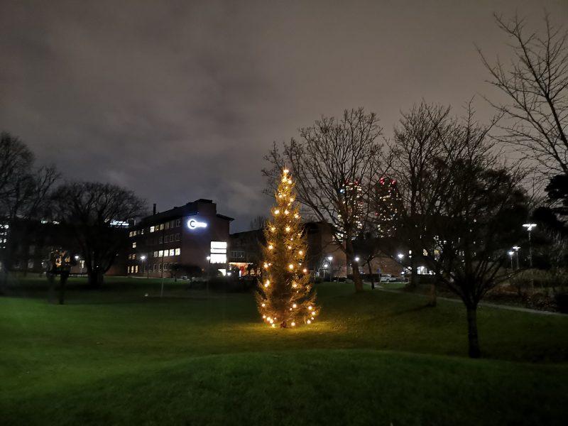 Christmas tree at Karolinska Institutet
