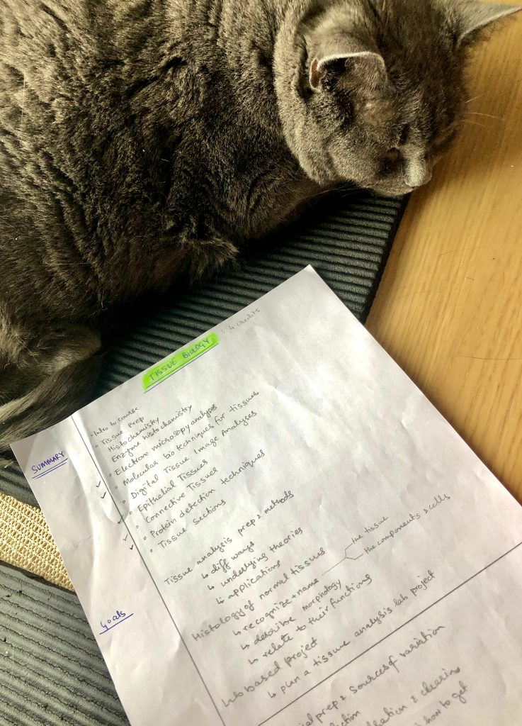 A cat sleeping next to a paper that gives a summary and outlines the goals of the Tissue Biology course.
