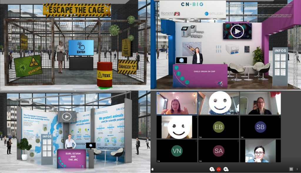A digital view of all our networking sessions at the JRC