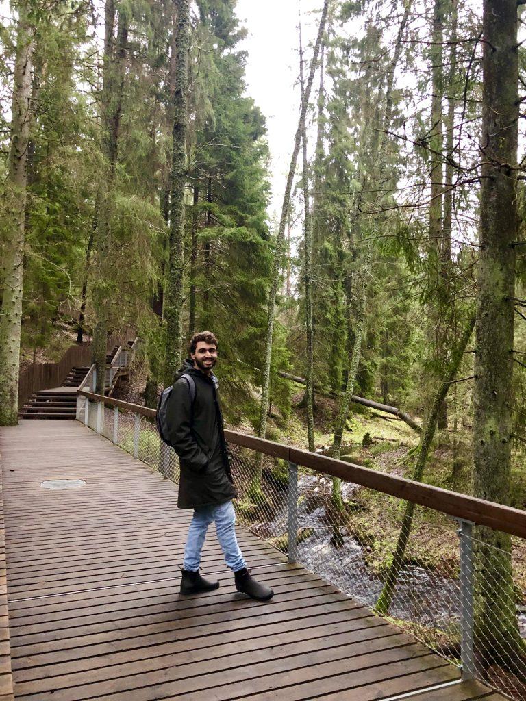 Path in Tyresta National Park